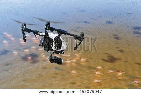 Drone flying above swamps with flamingo birds
