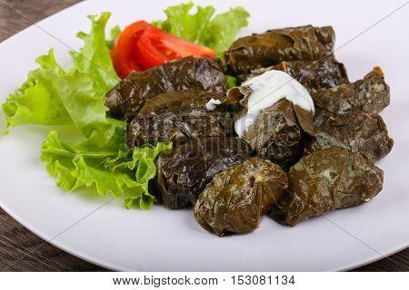 Dolma - Stuffed Meat In Grape Leaves