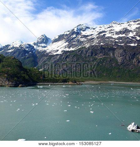 Scene From Glacier Bay, Alaska