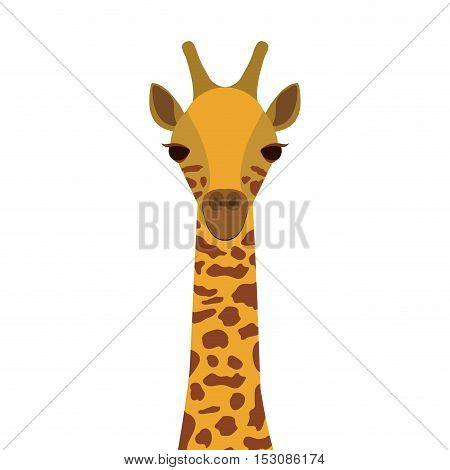 brown and yellow giraffe wildlife animal over white background. vector illustration