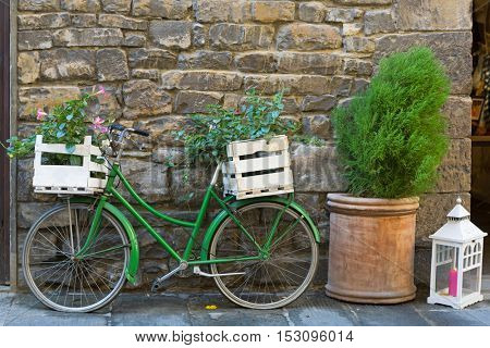 Old styled Bicycle in green with box of Mandevilla flowering plant parking outside building on street, Iatly