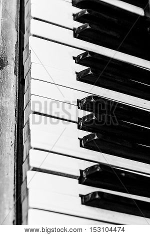 Piano buttons close-up perspective in black and white.