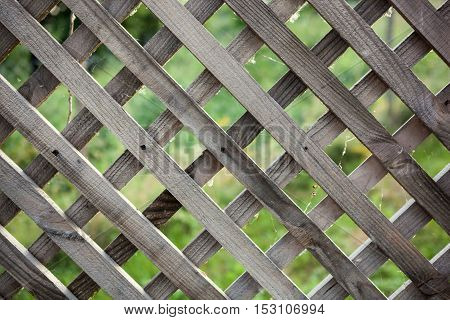 Old Rough Rhomb Shaped Fence.