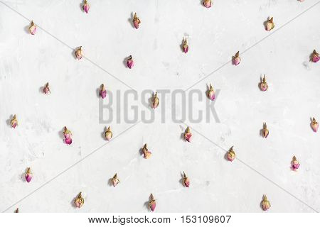 Pink Rose Flower Buds On Gray Concrete Board