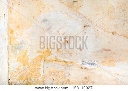 Сorner Of Room With Paper Backing And Mold Stains
