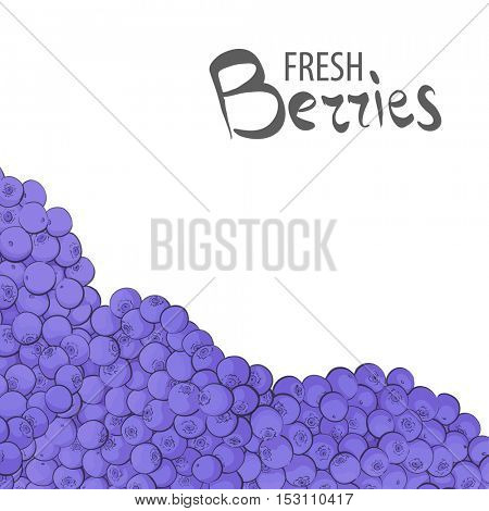 Delicious blueberry berries on a white background