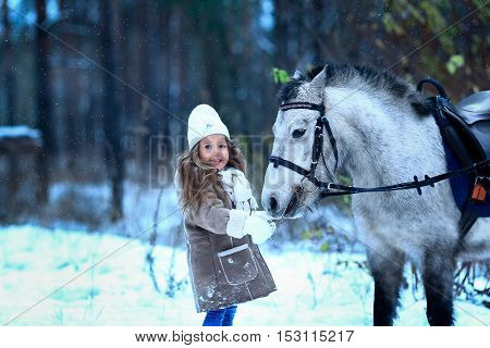 little girl feeding little horse pony winter