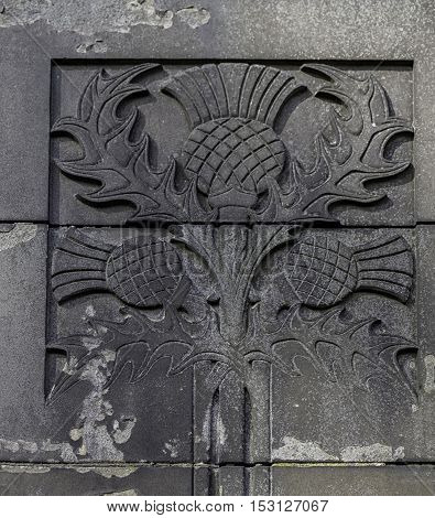 Emblem of Scotland thistle flower carved in gray stone