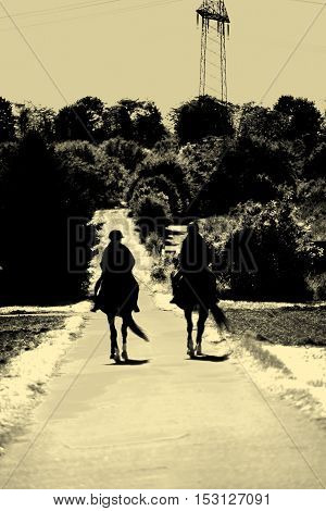 The silhouettes of two riders on two horses on a narrow path.