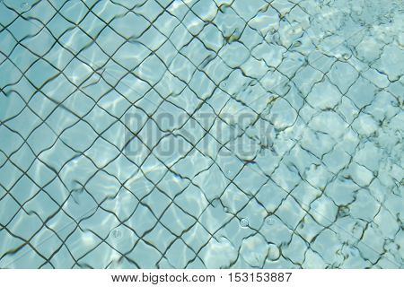 Swimming pool floor with light blue water and black grid between tiles