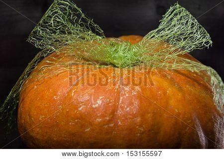 bright pumpkin with bow on dark wooden background