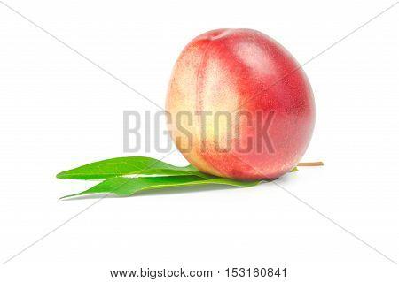 Nectarine fruit isolated on white background cutout.
