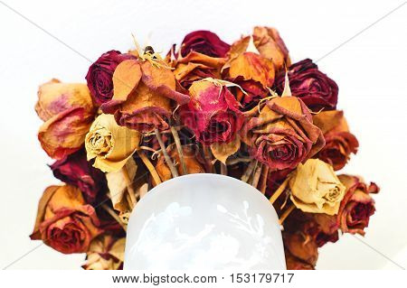 Bouquet of old dried out roses in a vase
