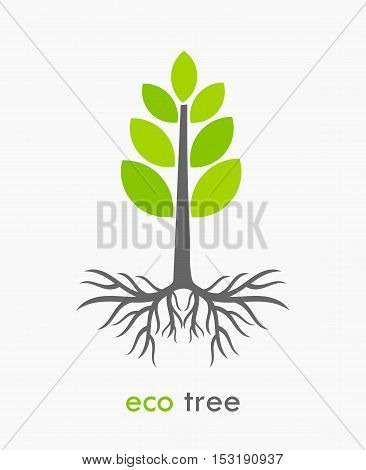Eco tree with roots flat design illustration