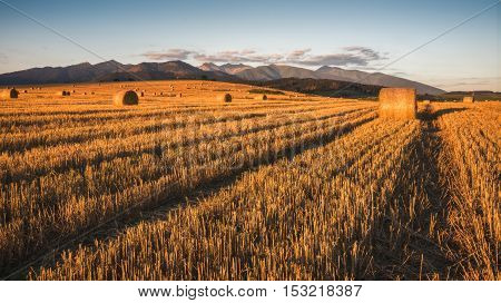 Harvested Field with Hay Bales in Golden Evening Light Under West Tatras Mountains Slovakia