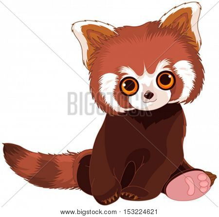 Illustration of cute red raccoon
