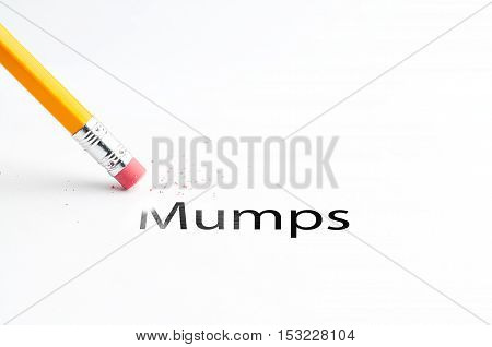 Closeup of pencil eraser and black mumps text. Mumps epidemic. Pig. Pencil with eraser.