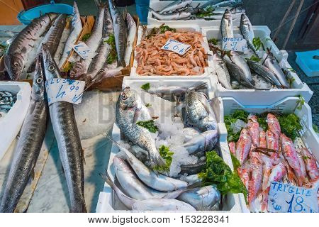 Market stand with fish and seafood seen in Palermo, Sicily