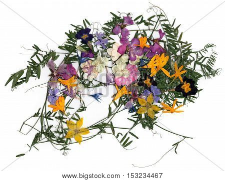 Application Bouquet Of Dry  Flowers