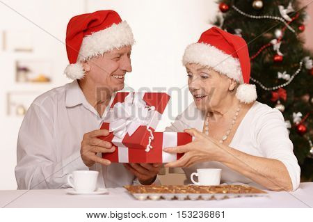 Amusing old couple wearing Christmas holiday caps with present