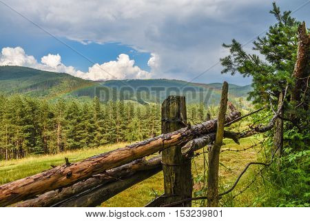 Rainbow over a forest with a wooden fence in the foreground