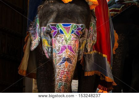 Painted elephant in Jaipur India. Typical touristic attraction at Amber Fort