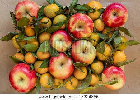Background from red apples and tangerines on branches with green leaves