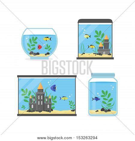Glass Aquarium Set for Interior Home. Equipment Hobby Flat Design Style. Vector illustration