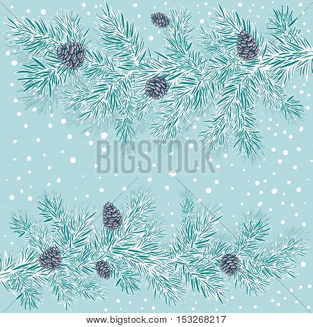 decorative stylized branches of spruce with cones on a blue background with snow