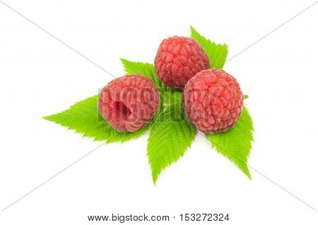 Three raspberries with leaves isolated on white.