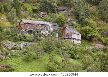 Traditional norwegian wooden house on a green forest hill landscape. Horizontal