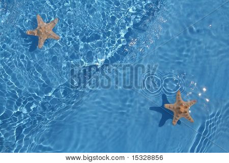 Starfish in flowing water