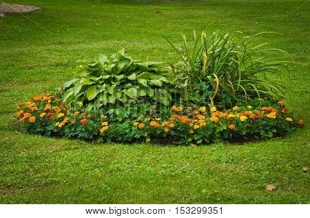 colored flower bed on a green lawn