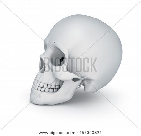 White skull over white 3D illustration , 3d render