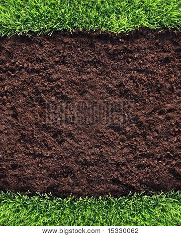 Healthy grass and soil background similar available in my portfolio