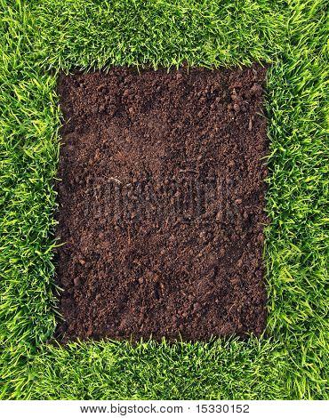 Quadro de grama e solo saudável semelhante disponível no meu portfólio