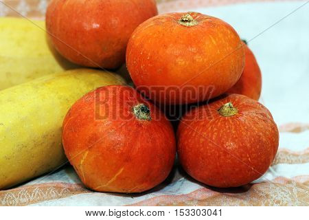 Small pumpkins and squashes. Autumn harvest. Food