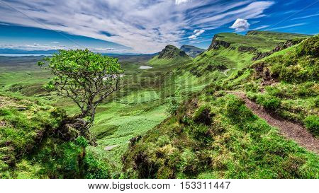 Breathtaking View From Quiraing To Valley In Scotland At Summer, United Kingdom