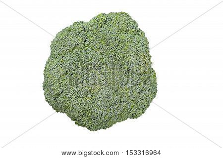 broccoli isolated on a white background top view visible texture of the cabbage