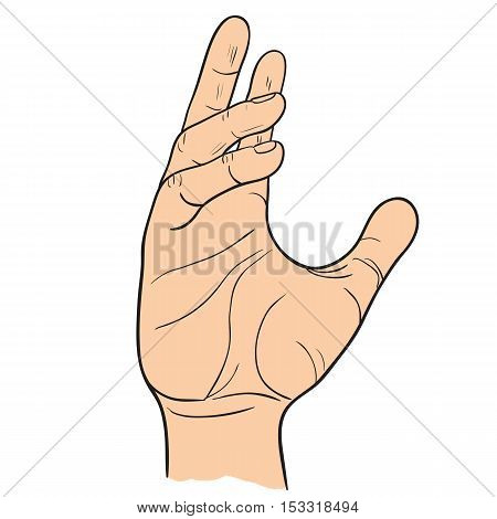 Hand with bent fingers gestures. Vector illustration of linear black and white. Template of the gesture of the hand which holds the object.