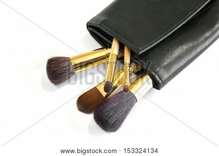 Makeup brushes in a black leather cover
