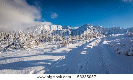 Winter Mountain Trail At Sunset, Tatras, Poland