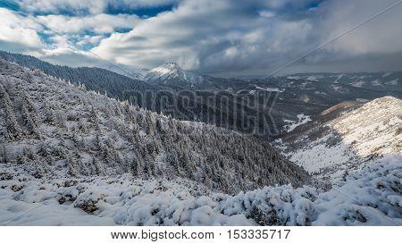 Winter Trail To The Valley Gasienicowej At Dawn, Tatra, Poland