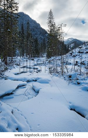 Frozen Mountain River In The Tatra Mountains, Poland