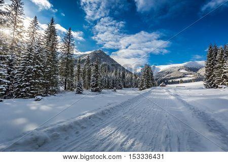 Snowy Road Leading To Chocholowska Valley At Winter, Tatra Mountains, Poland