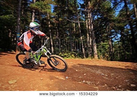 A biker riding a mountain bike in a forest
