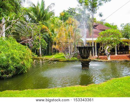 The Bird park at Bali island at Indonesia