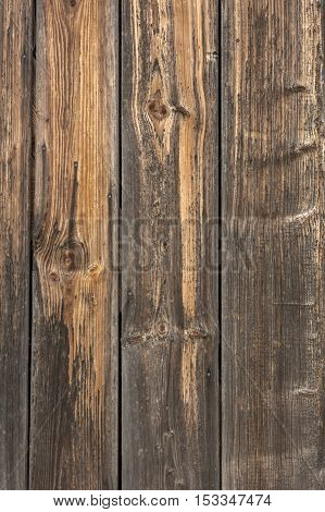 Vertical wooden planks with knothole - texture or background