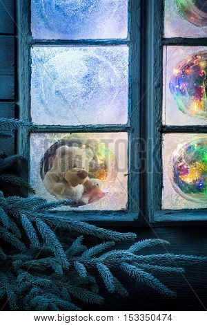 Teddy Bear In Frozen Window For Christmas