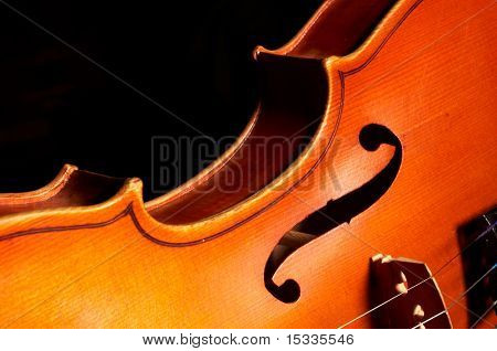 fragment of violin